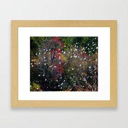 Ibises In Flight Framed Art Print