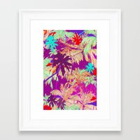 palm trees Framed Art Prints featuring Palm Trees by Marcella Wylie