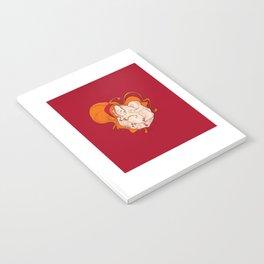 The breastfeeding Notebook