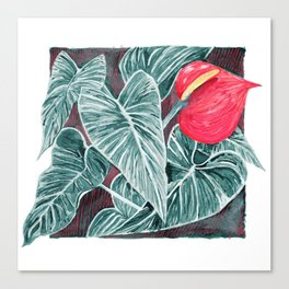 Pop Anthurium Leafs and Flowers Canvas Print