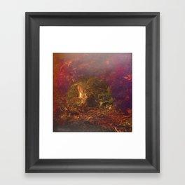 Rabbit hole Framed Art Print
