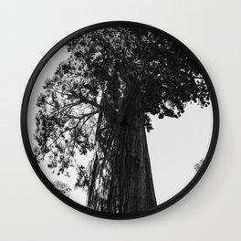 Sequoia National Park VI Wall Clock