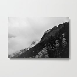 Pine Hills Metal Print
