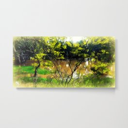 Wetlands Metal Print