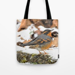 Male Varied Thrush Amid the Snow and Seed Tote Bag