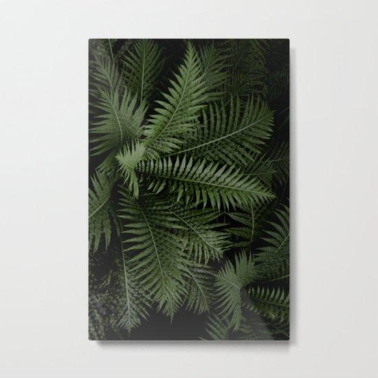 Tropical leaves 02 Metal Print