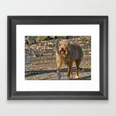 Beach Bum Framed Art Print