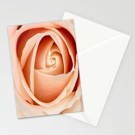 Peach Rose Art Stationery Cards