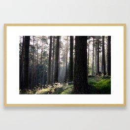Ladybower Framed Art Print