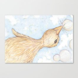 Duckie Canvas Print