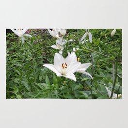Japanese Lilies // Flower Field Bush In Park Rug