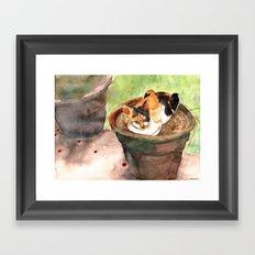 Calico Cat at Adriana's Garden Framed Art Print