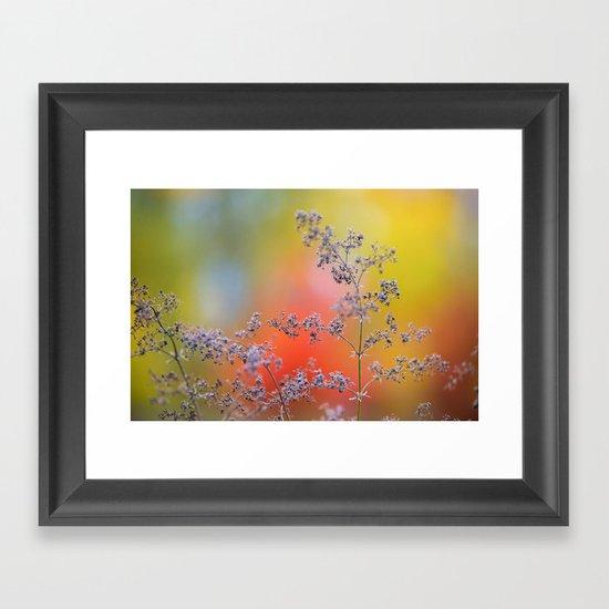 Flowers in autumn Framed Art Print