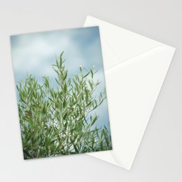 olive tree - nature photography - green olive tree in Mallorca Stationery Cards