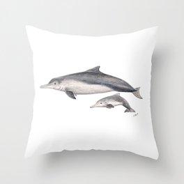 Australian humpback dolphin (Sousa sahulensis) with baby Throw Pillow