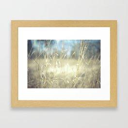 November Field  Framed Art Print