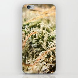 Diamond OG Indoor Hydroponic Close Up Trichomes Viewing iPhone Skin