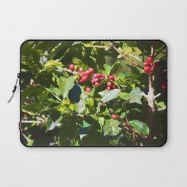 Coffee beans on vine in Panama Laptop Sleeve