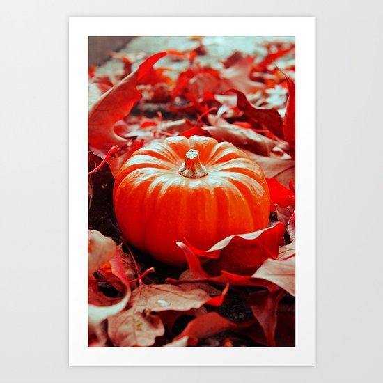 Autumn details Art Print