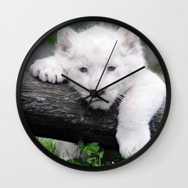 'Too Pooped to Pop' Baby Albino Lion Cub Wall Clock