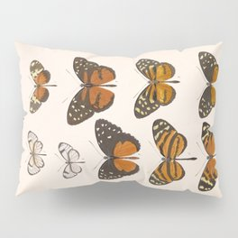 Vintage Scientific Anatomical Insect Butterfly Illustration Vintage Hand Drawn Art Pillow Sham