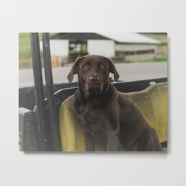 Those eyes though Metal Print