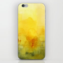 Memory of a landscape iPhone Skin