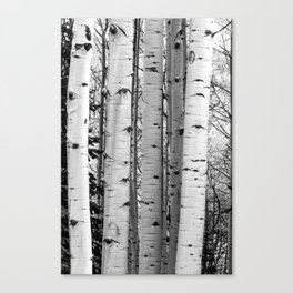 Into the Woods / Black & White Canvas Print