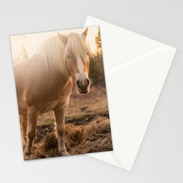 Horses v1 Stationery Cards