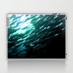 Thousands of jack fish Laptop & iPad Skin