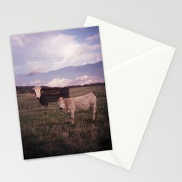 Two Cows Stationery Cards