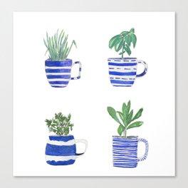 Blue stripes and herbs quartet Canvas Print