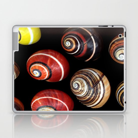 Polymita Cuban Snail Laptop & iPad Skin