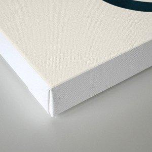 Elements II Canvas Print