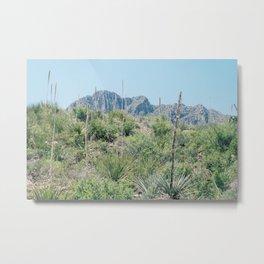 Sotol Mountain Metal Print