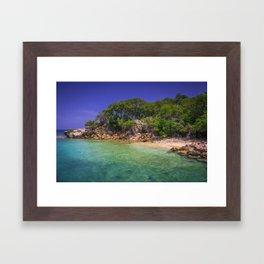 Tropical Paradise Framed Art Print