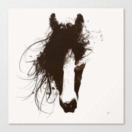 Colt Canvas Print