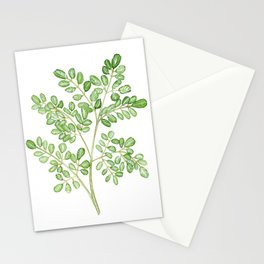 Moringa Watercolor Stationery Cards