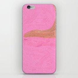 Conundrum iPhone Skin