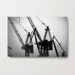Dusk of Cranes Metal Print