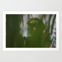 Dancing people, dance, shadows, hands and plants, blurred photography, artistic, forest, yoga Art Print