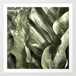 Curvey Leafy Art Print