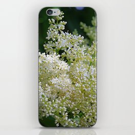 Snowy lilac blossoms iPhone Skin