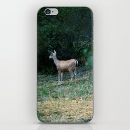 The Forest Fringe iPhone Skin