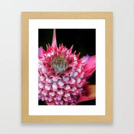 Pink Pineapple Framed Art Print
