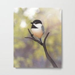 Ellery the black-capped chickadee Metal Print