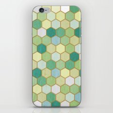 The pond iPhone Skin