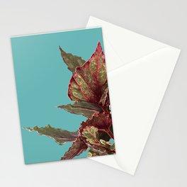 Begonia Stationery Cards
