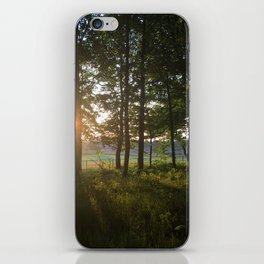 Dusk to Dawn iPhone Skin