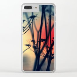 Shapes - dry weeds at sunrise Clear iPhone Case